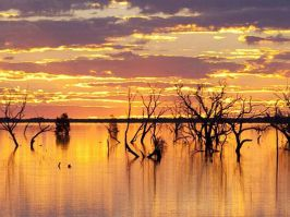 Sunset Strip, Lake Menindee