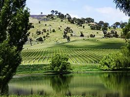 Canberra District Wine Region