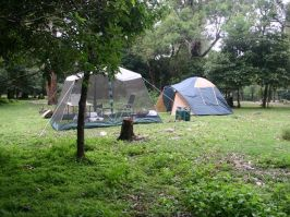 Tents at Bittangabee campground - Green Cape - South Coast