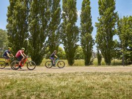 Bike Riding at Heifer Station in Orange, Country NSW