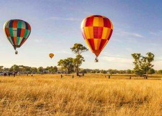 Hot air balloons floating above Canowindra