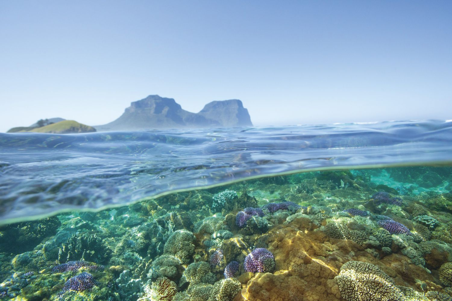 Lord Howe Island Travel Packages