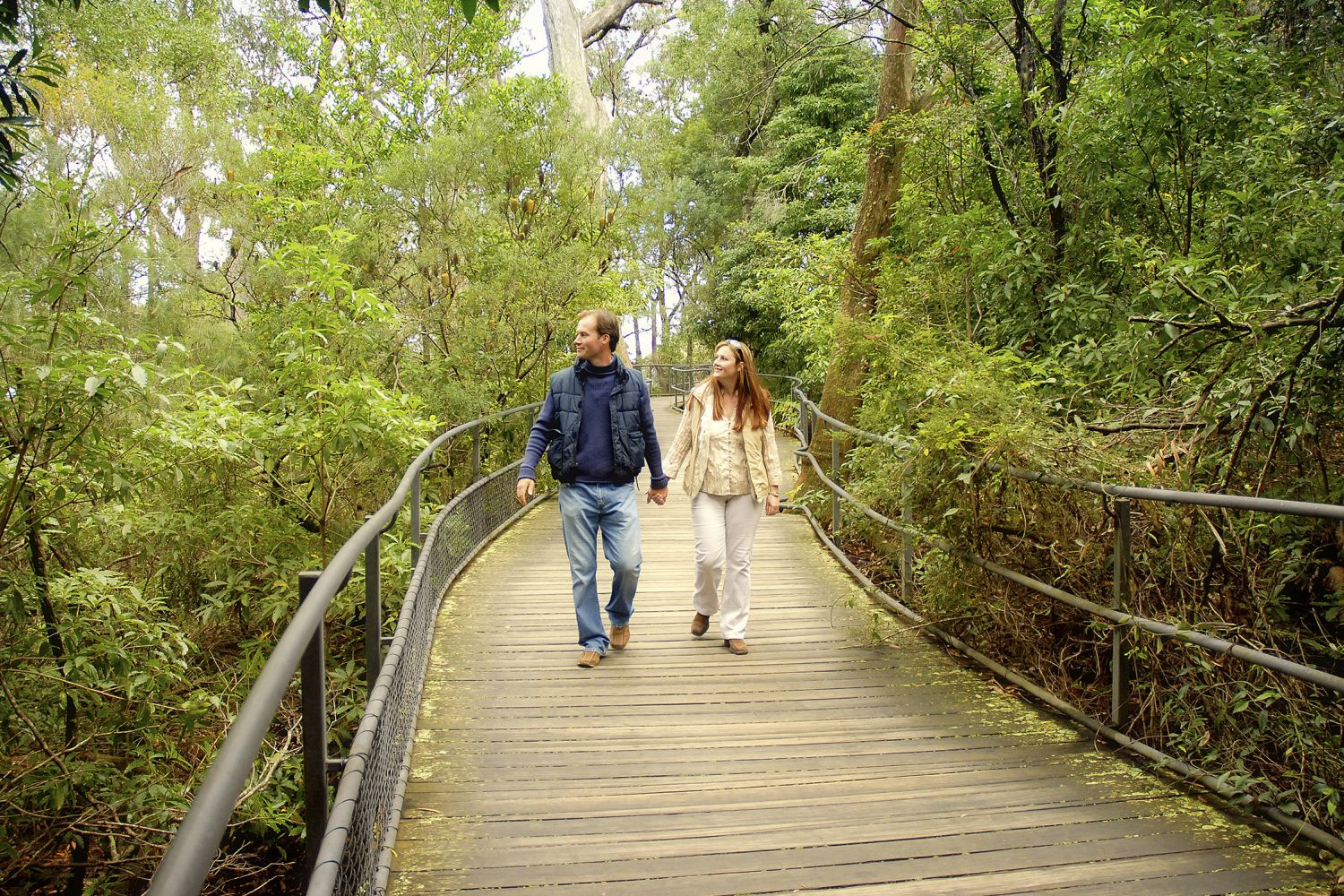 A couple exploring Fitzroy Falls, Morton National Park, Southern Highlands