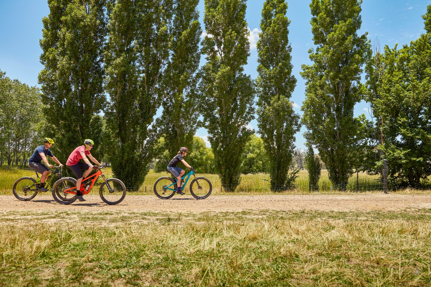 Bike riding outdoors by tall trees in Orange, NSW