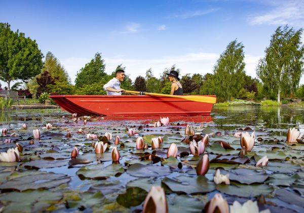 Couple rowing in a lake at Mayfield Garden - Oberon