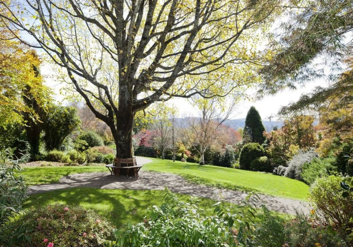 Blue Mountains Botanic Garden - Mount Tomah