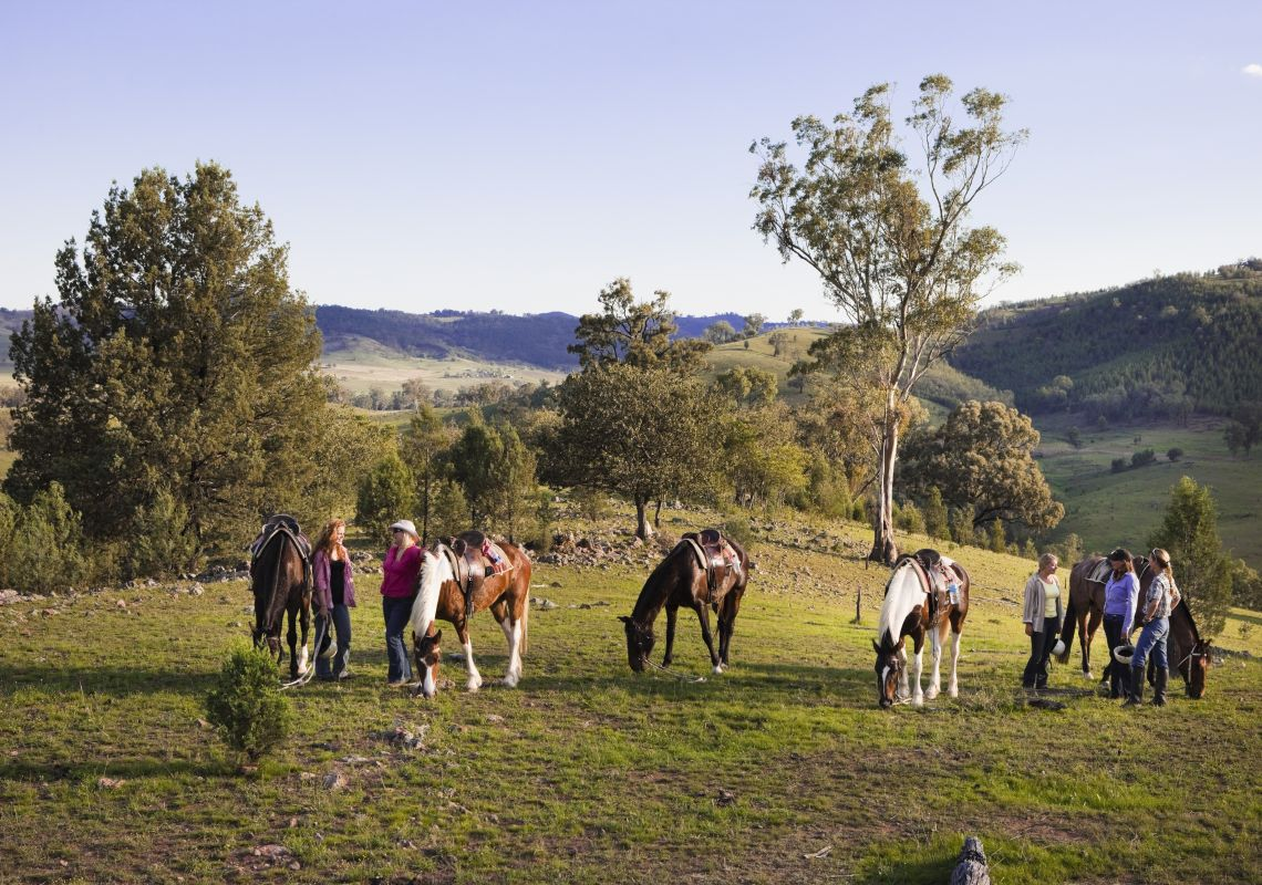 A Wade Horses Bingara trail-riding tour, near Bingara