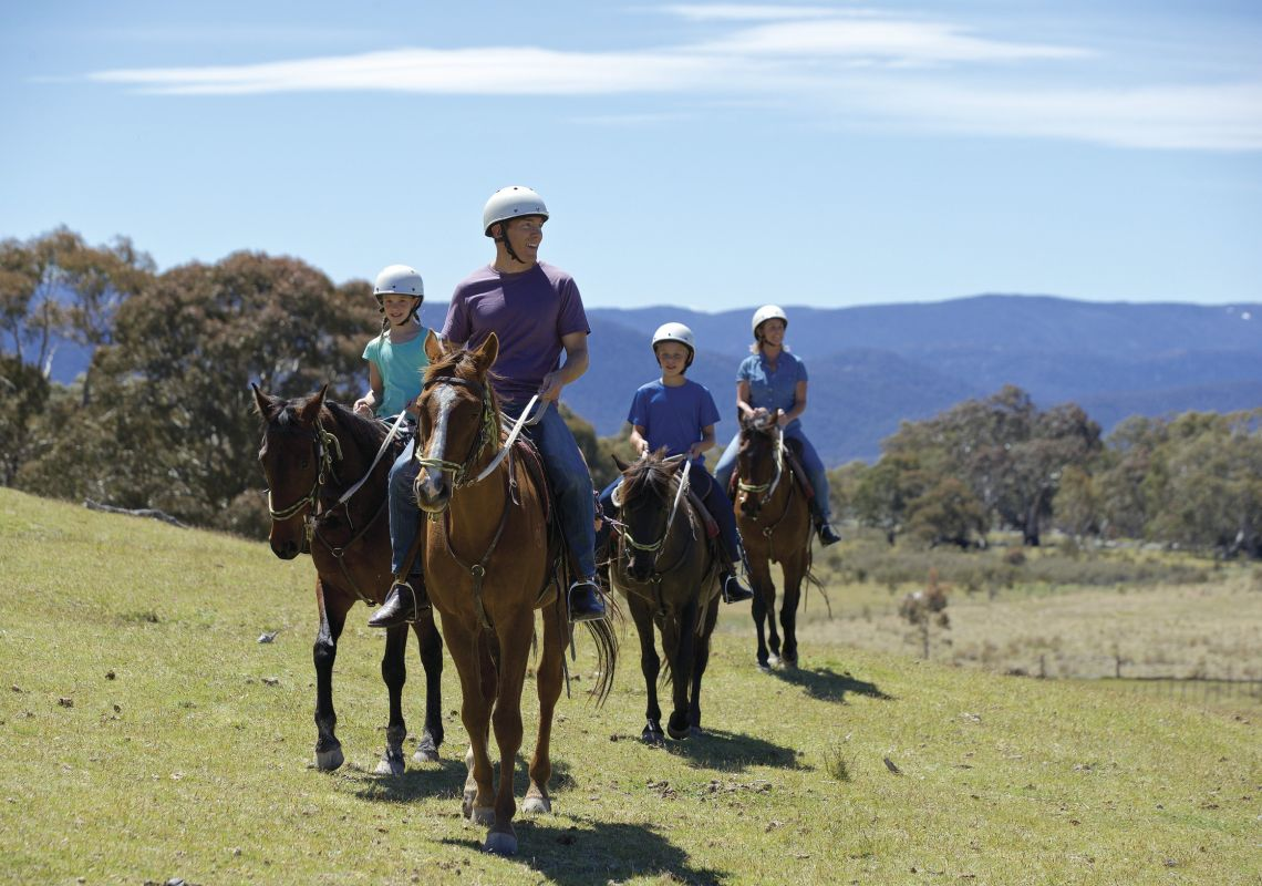 Horse Riding in the Snowy Mountains