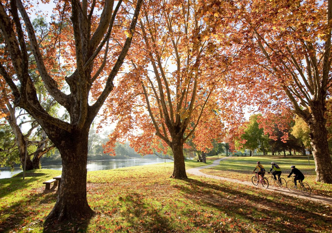 Cycling through Norieul Park in Albury in The Murray