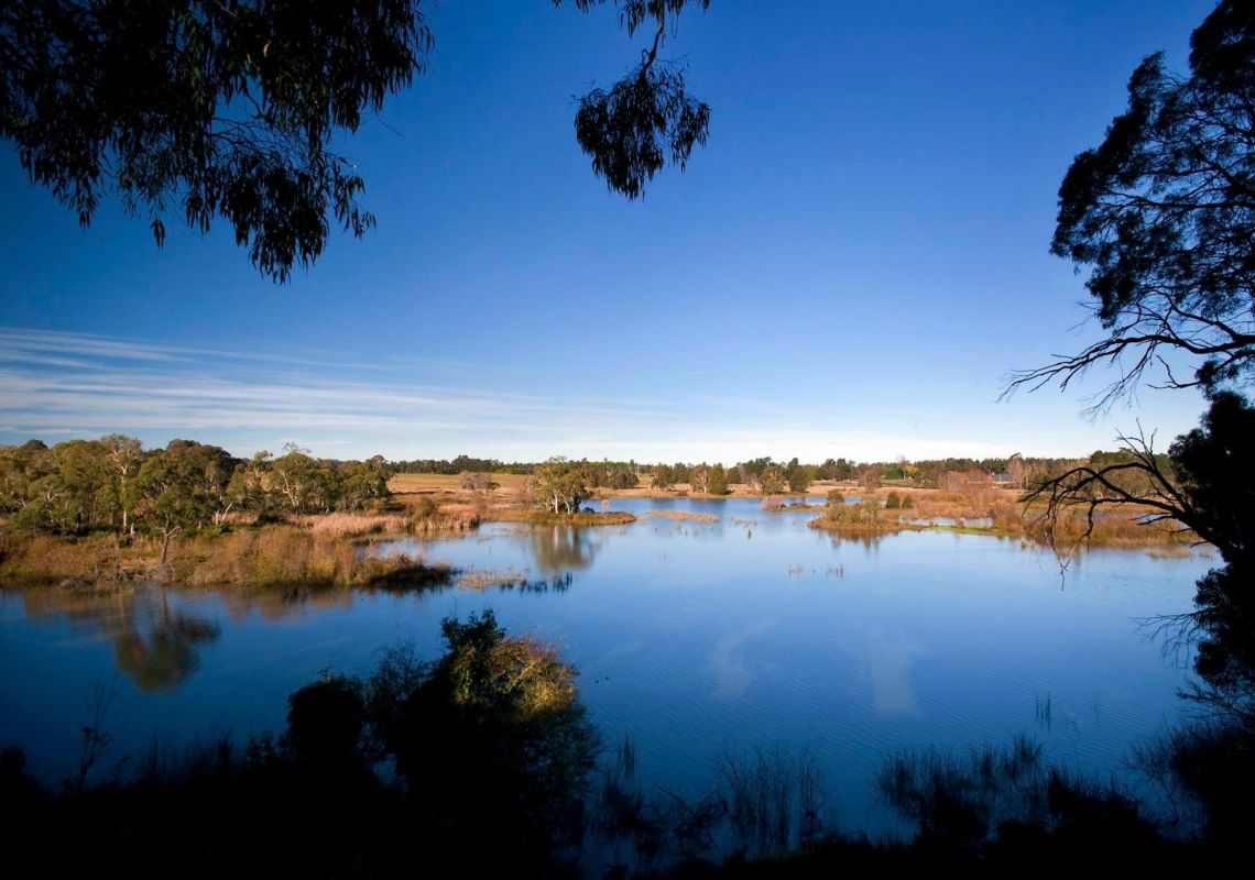 Cecil Hoskins Nature Reserve, Moss Vale
