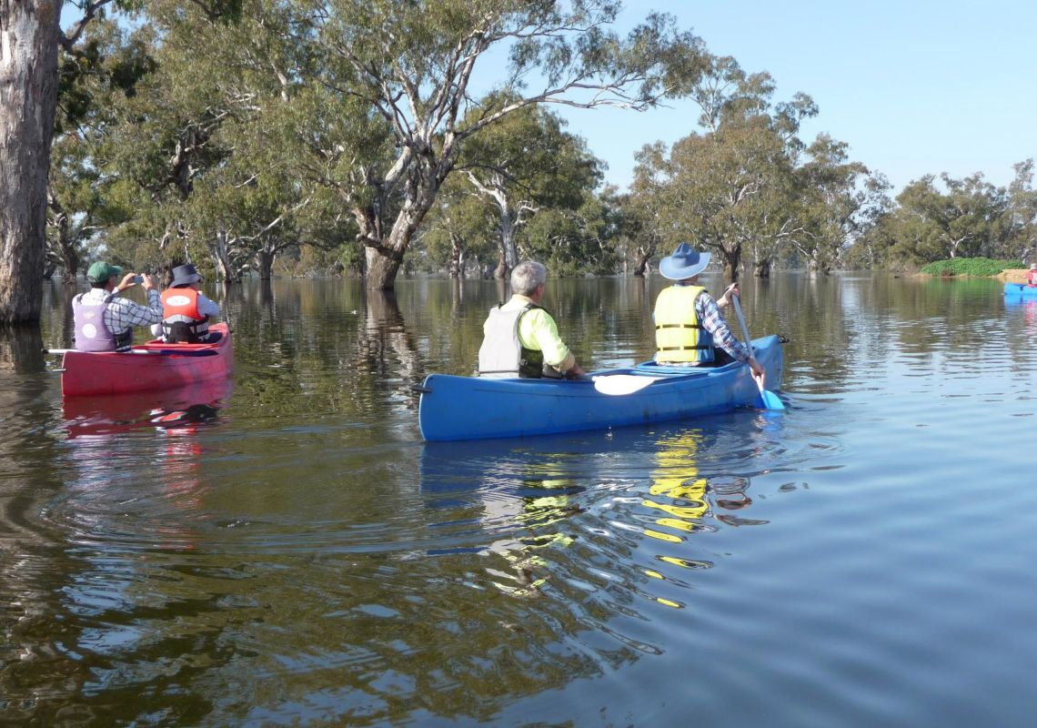Canoeing on Doodle Cooma Swamp in Henty, The Murray