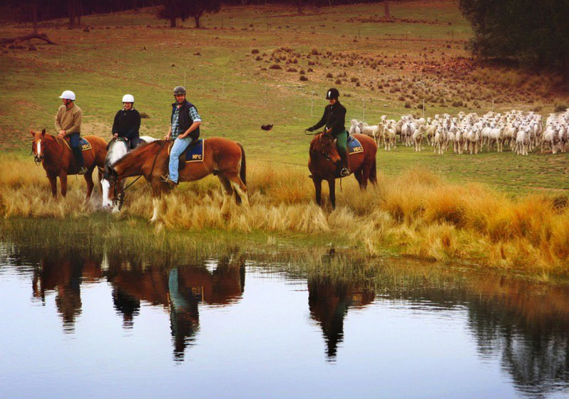 Burnlee Excursions on Horseback, Murrumbateman