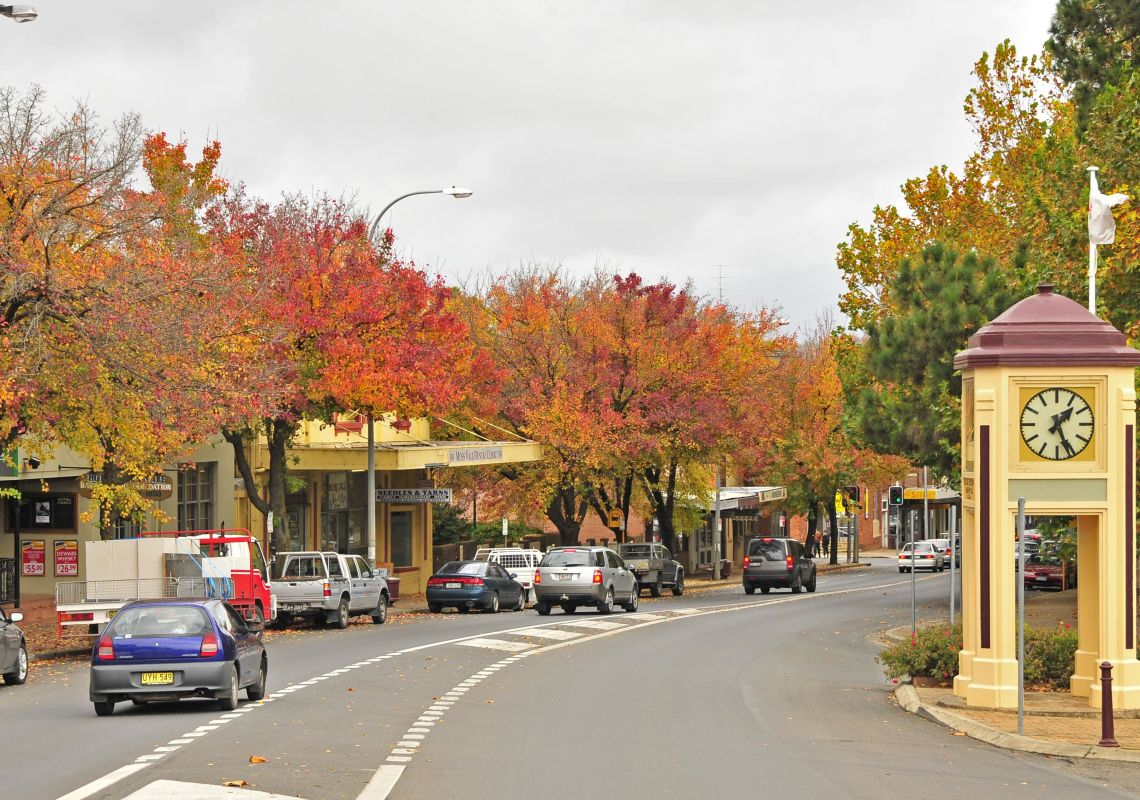 Autumn trees lining Moss Vale's main street, Southern Highlands