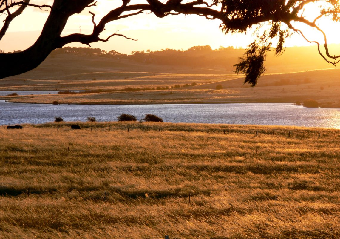 Goulburn Region Nsw Plan A Holiday Things To Do