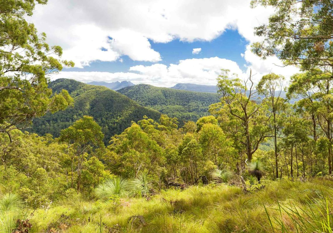 Spectacular views from Sherwood Lookout, Toonumbar National Park, NSW