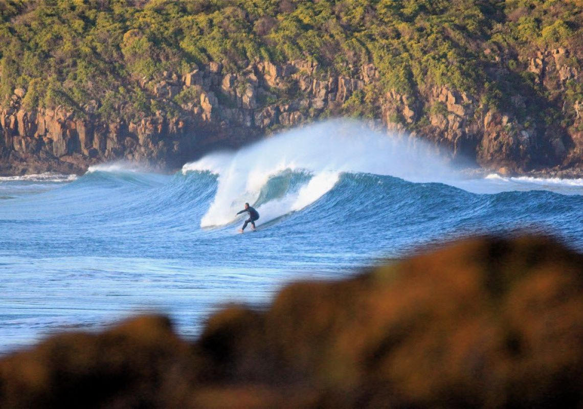 Surf at the Farm in Shellharbour