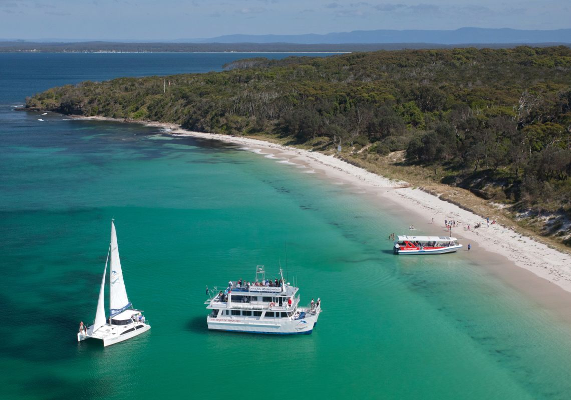 Fleet of Dolphin Watch Cruises boats in Jervis Bay, on the NSW South Coast