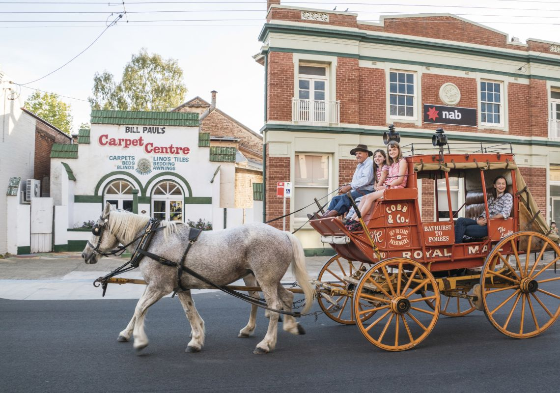 Enjoying a horse-drawn carriage ride through Canowindra streets