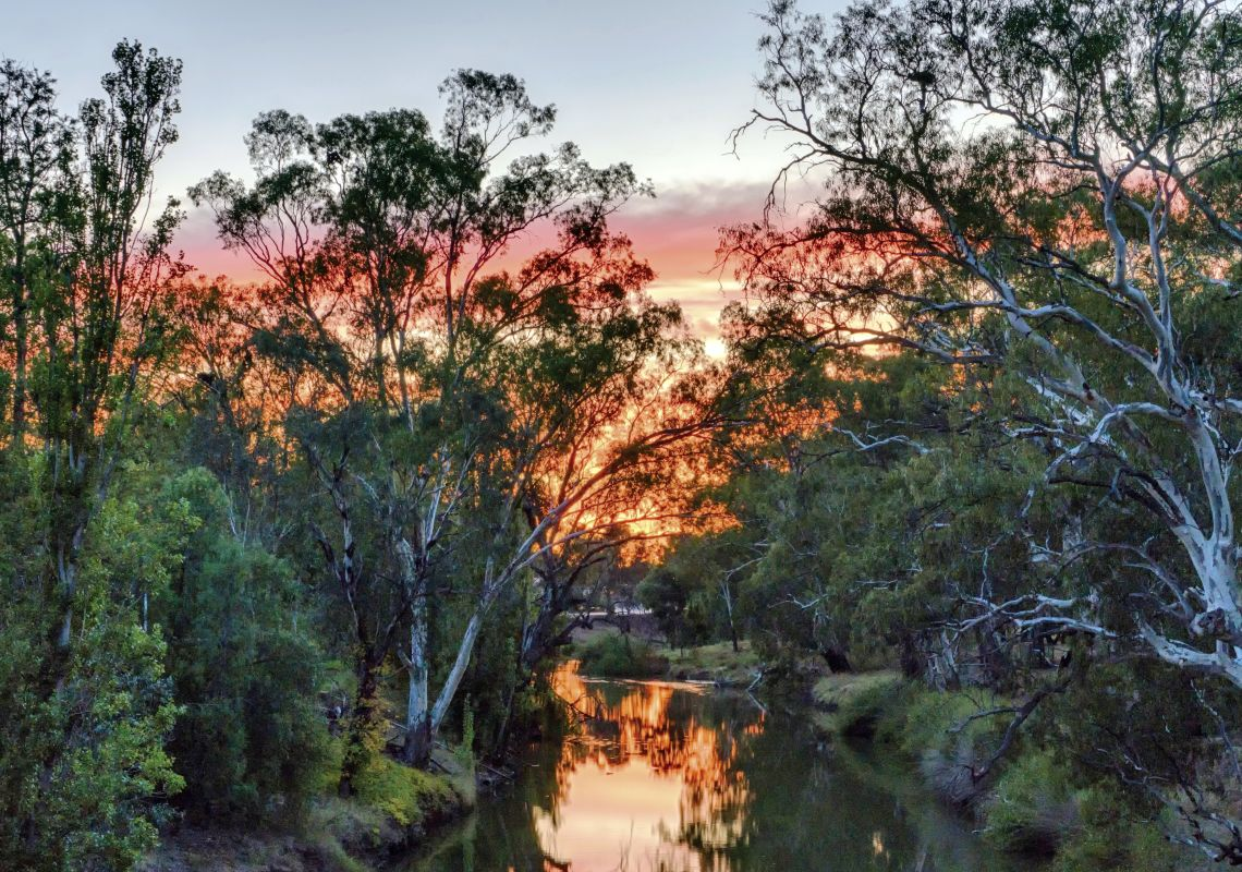 A sunrise reflecting off the Lachlan River, Condobolin, NSW