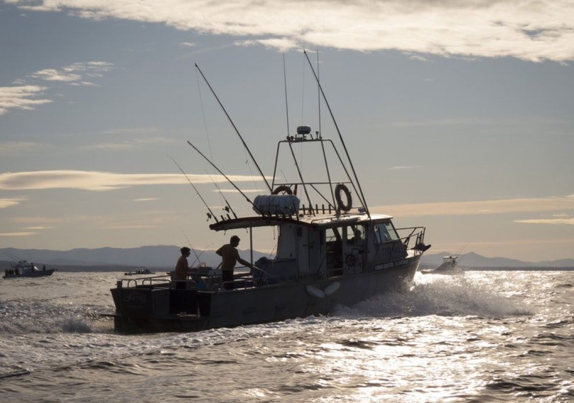 Montague Island Game and Sport Fishing Charters in Eurobodalla