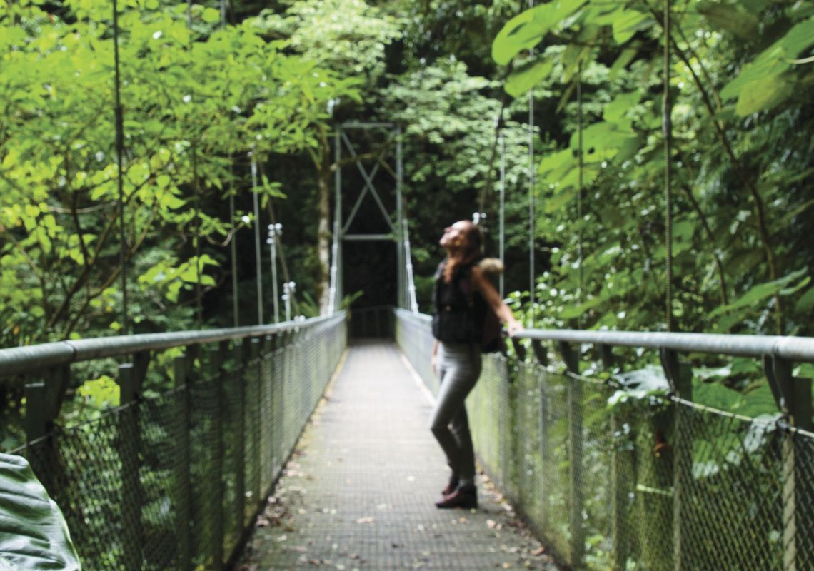 Woman enjoying a relaxing walk to Crystal Shower Falls, Dorrigo National Park