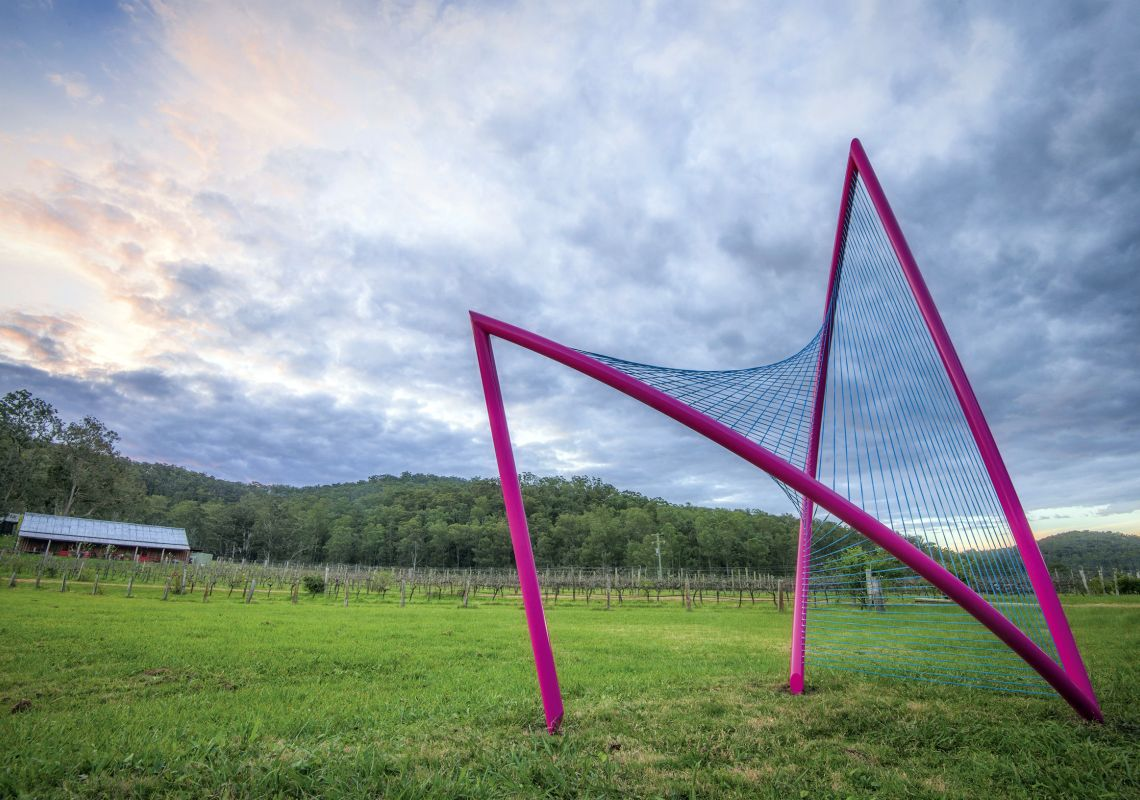 Inclusion sculpture by artist Greer Taylor at Sculpture in the Vineyards in Wollombi