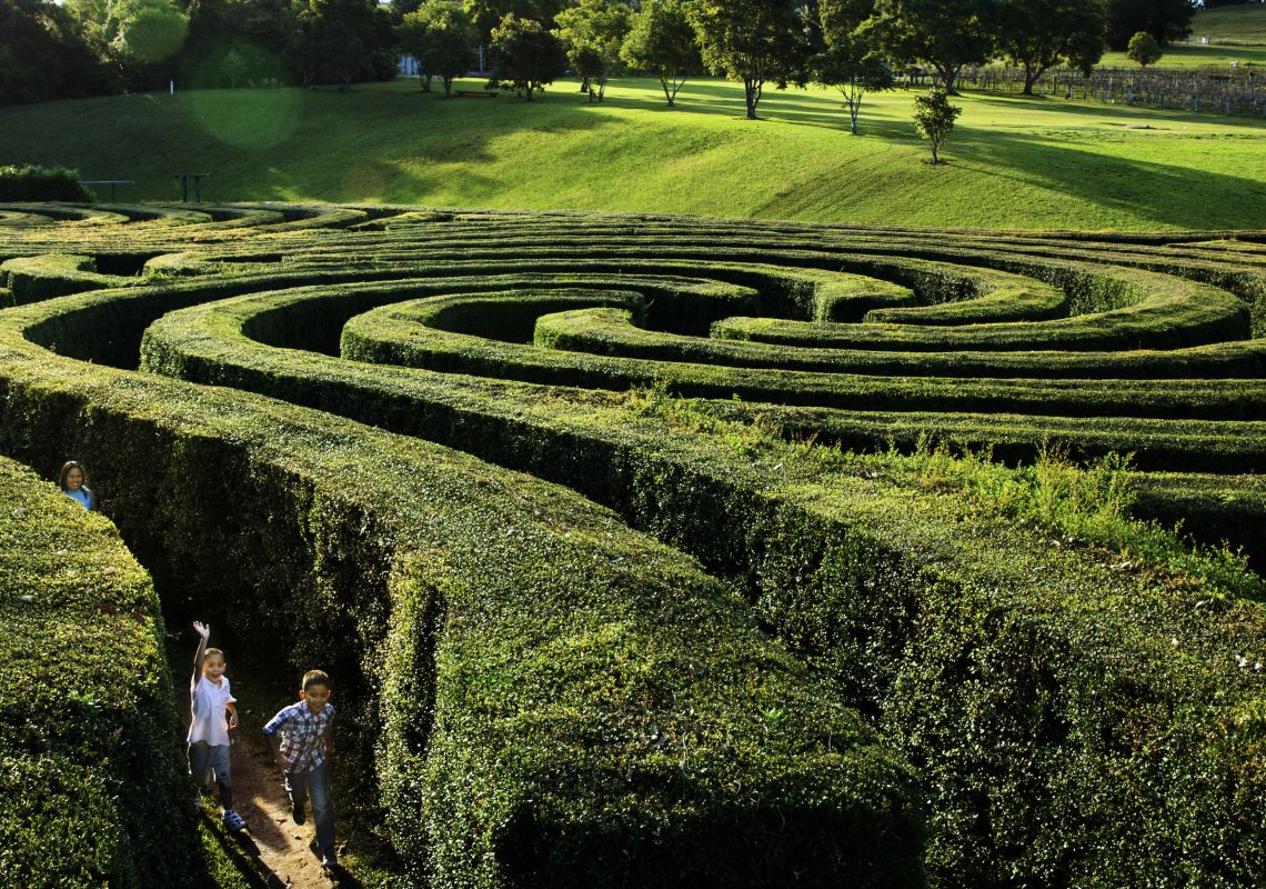 Children running through the Bago Maze, Wauchope