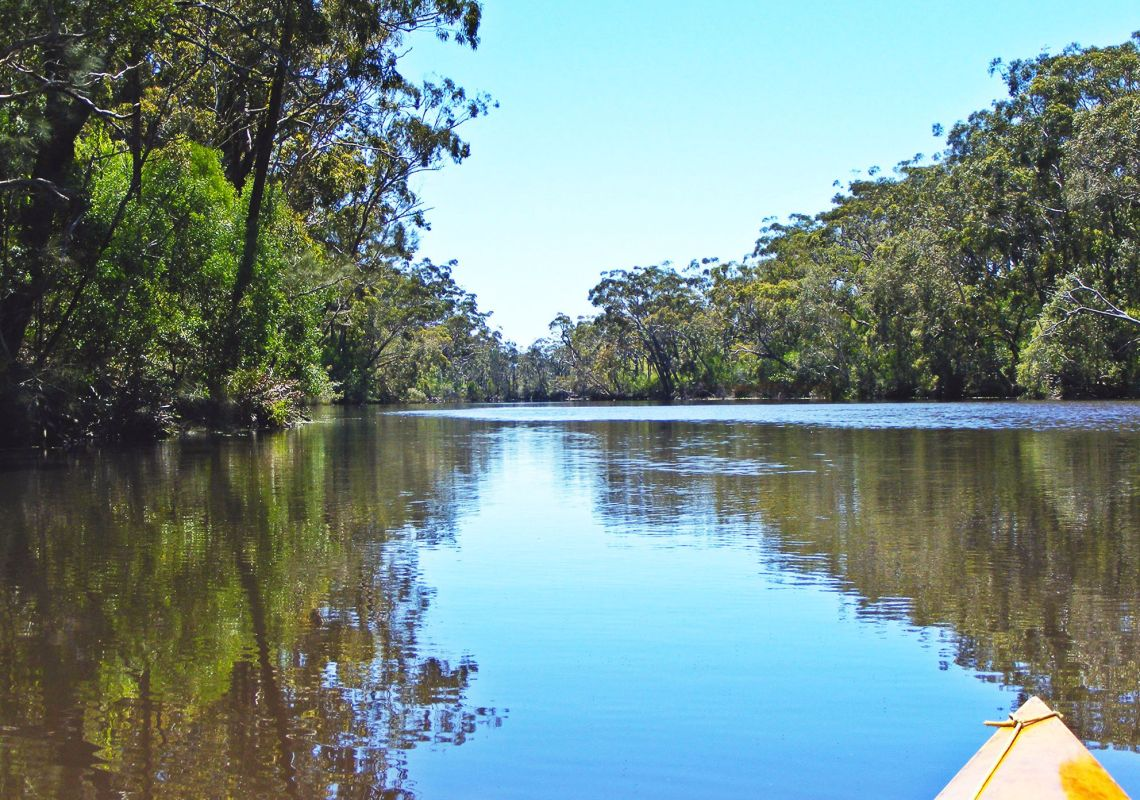Beautiful view from a kayak of the tranquil Esk River, Iluka