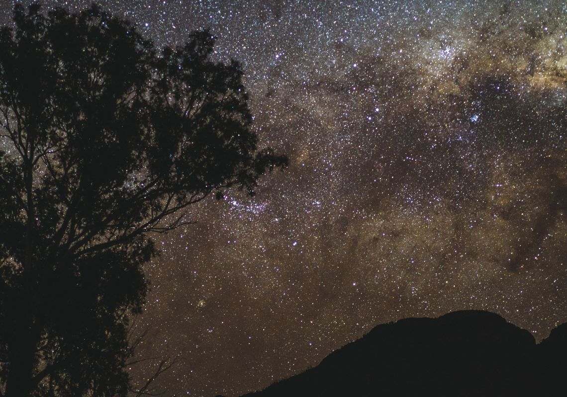 Starry night above a tree and mountain silhouette, Warrumbungles