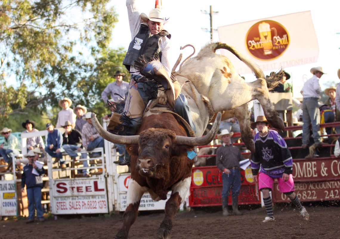 Cowboy bull riding at Coonamble Rodeo and Campdraft, NSW