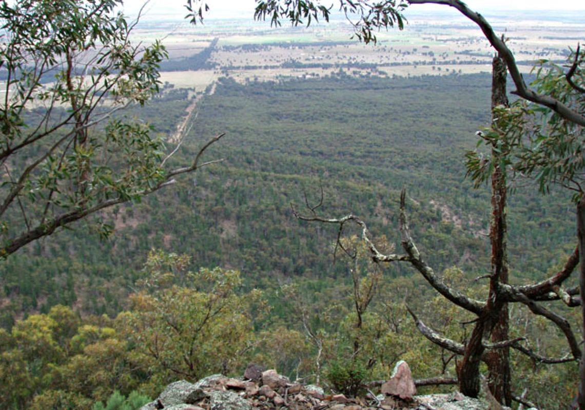 View of Goobang National Park from Burrabadine Peak, near Peak Hill
