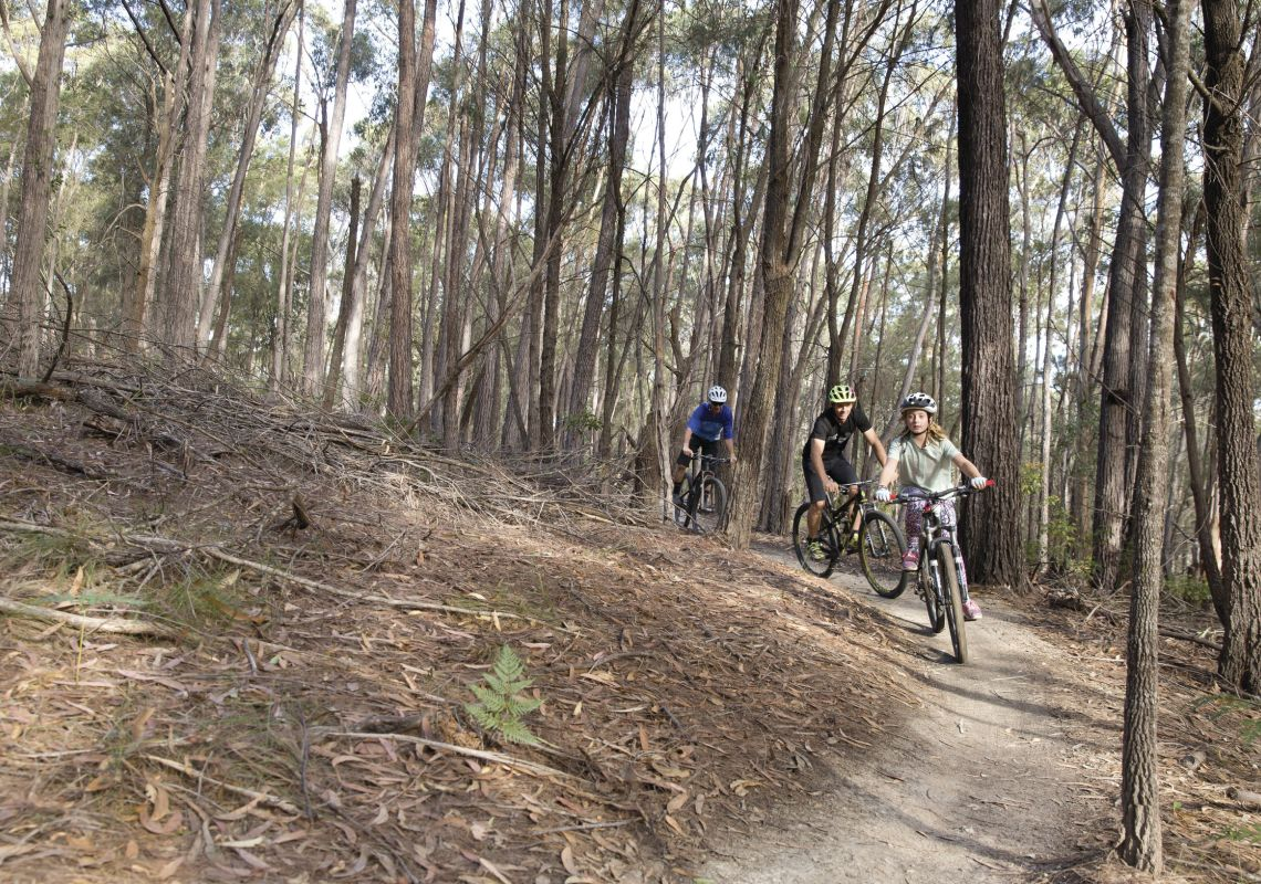 Family enjoying a day of riding on the 20km Bundadung Trail Network in Tathra.