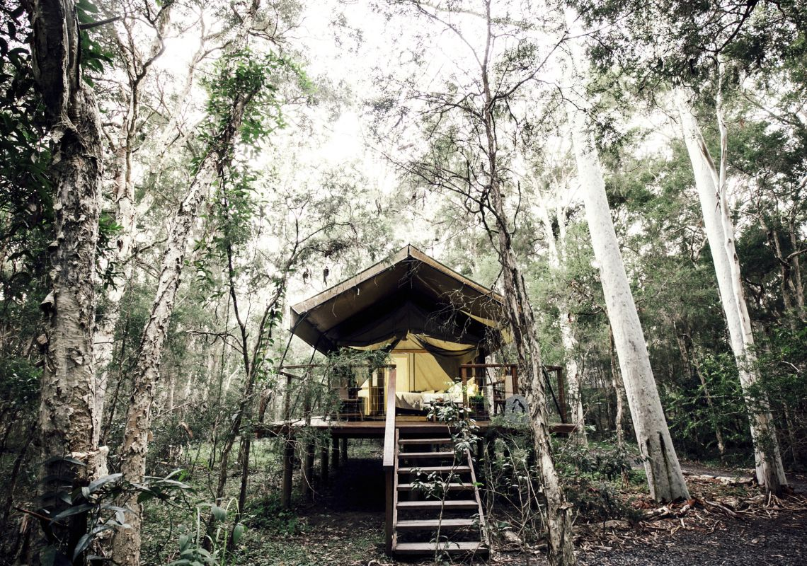 Exterior view of the Deluxe Plus tent at Paperbark Camp, Jervis Bay