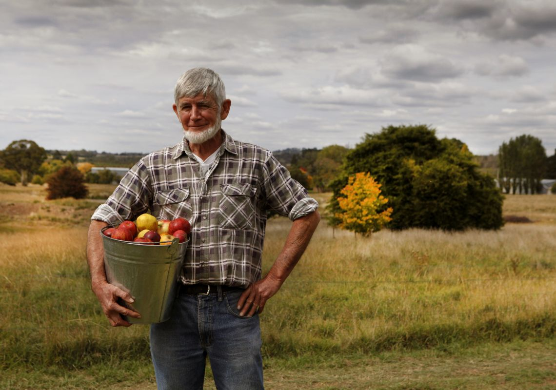 Man carrying bucket of apples from Small Acres Cyder, Orange