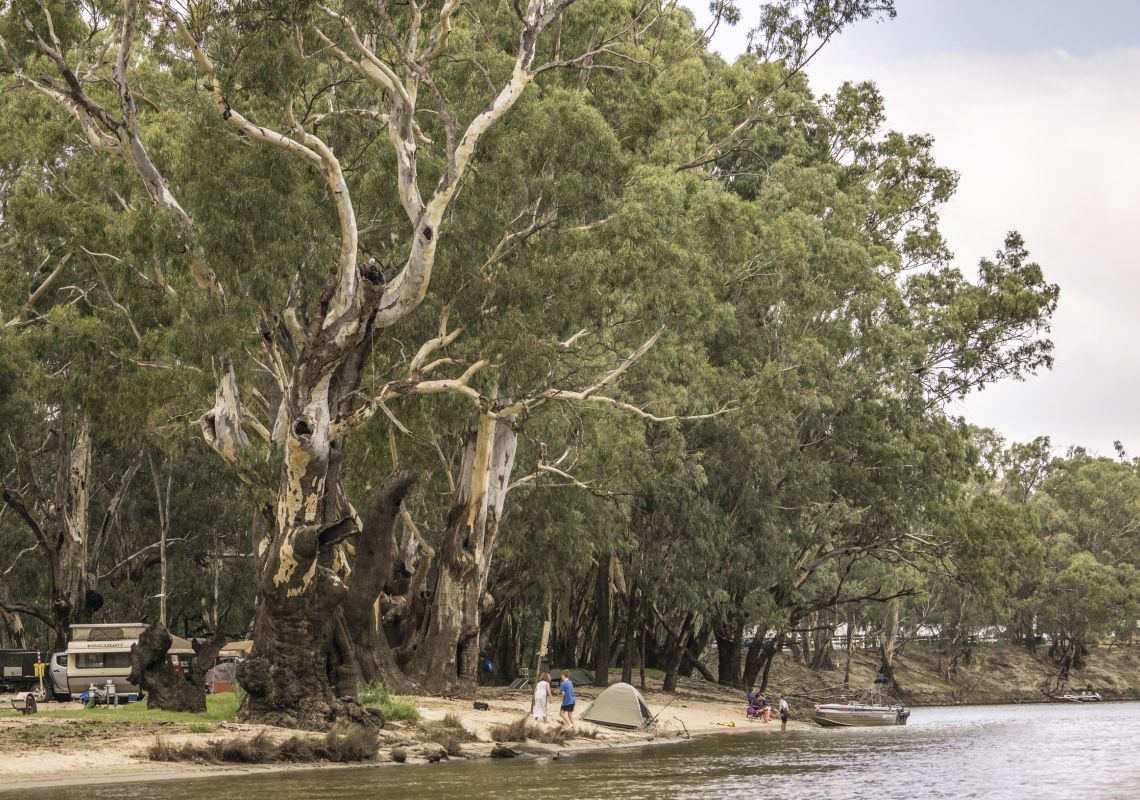Campsites set up by Edward River at BIG4 Deniliquin Park in  Deniliquin, Riverina