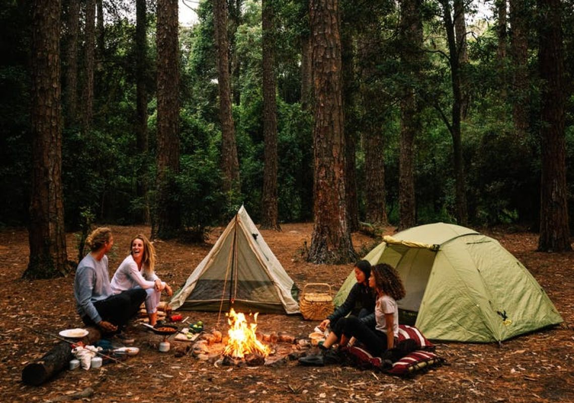 The Pines Campground, Olney State Forest at Ravensdalein Wyong, Central Coast