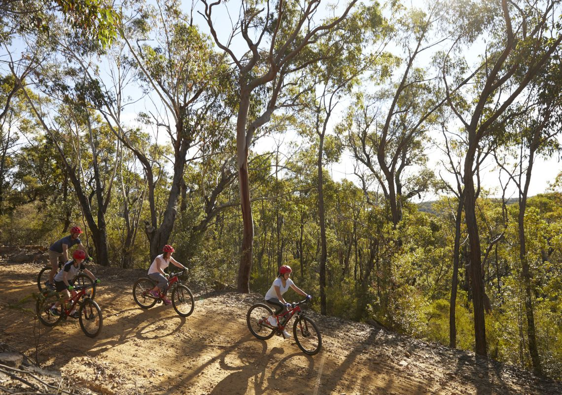 Family enjoying a day of mountain biking in the Blue Mountains National Park