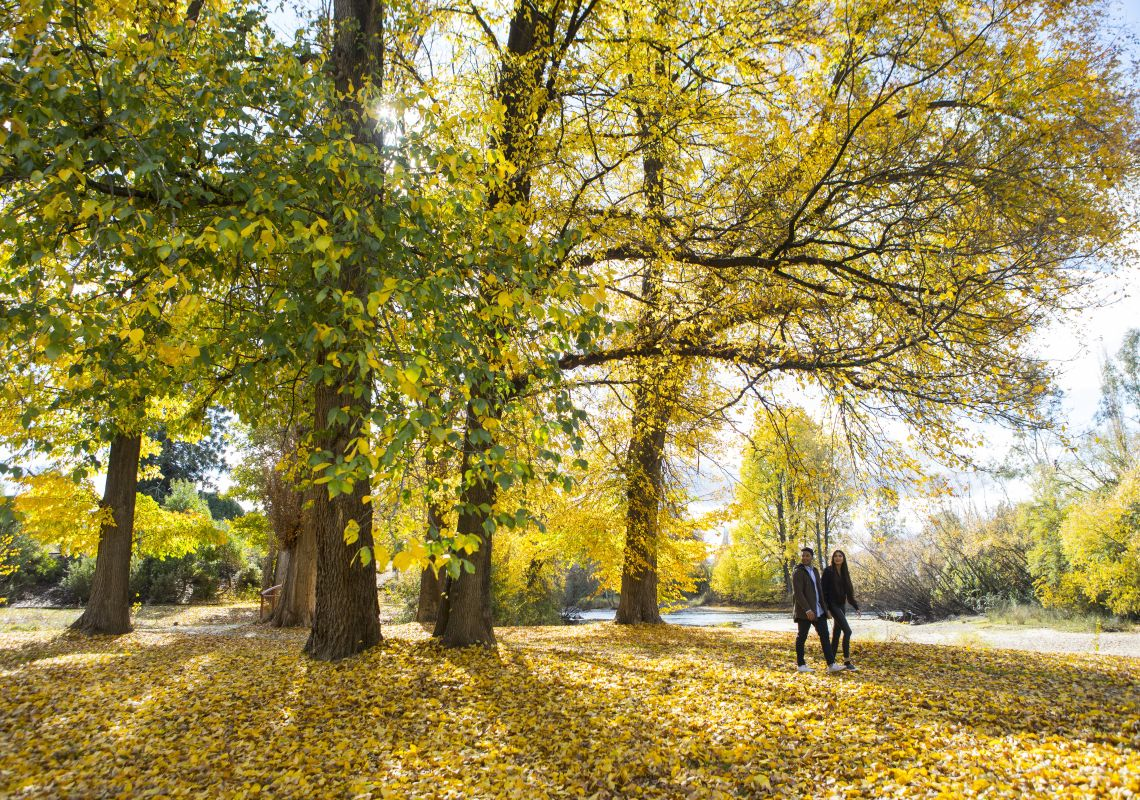 Couple enjoying the autumn colours along the Tumut River walk in Tumut, Snowy mountains