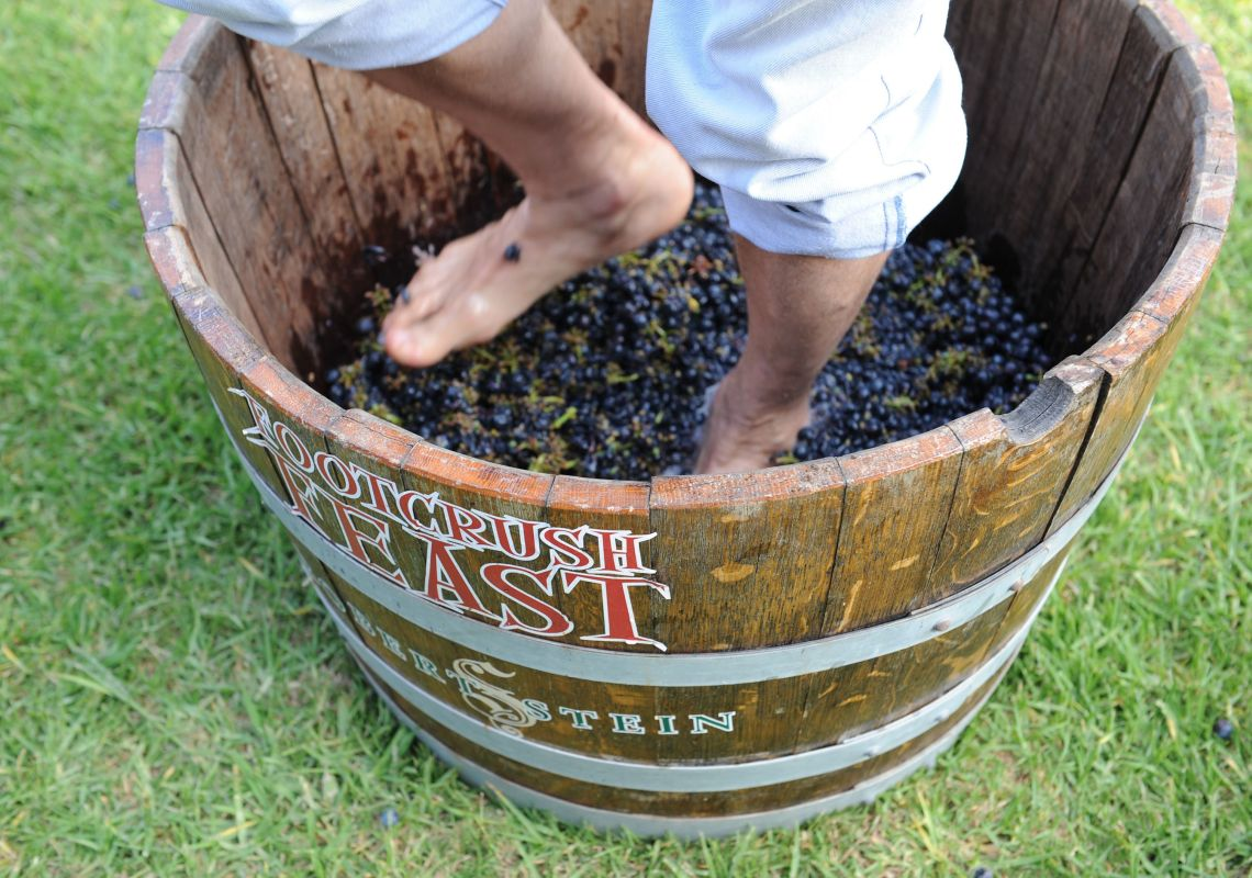 Grape stomping activity at Footcrush Feast held at Robert Stein Winery and Vineyard, Mudgee