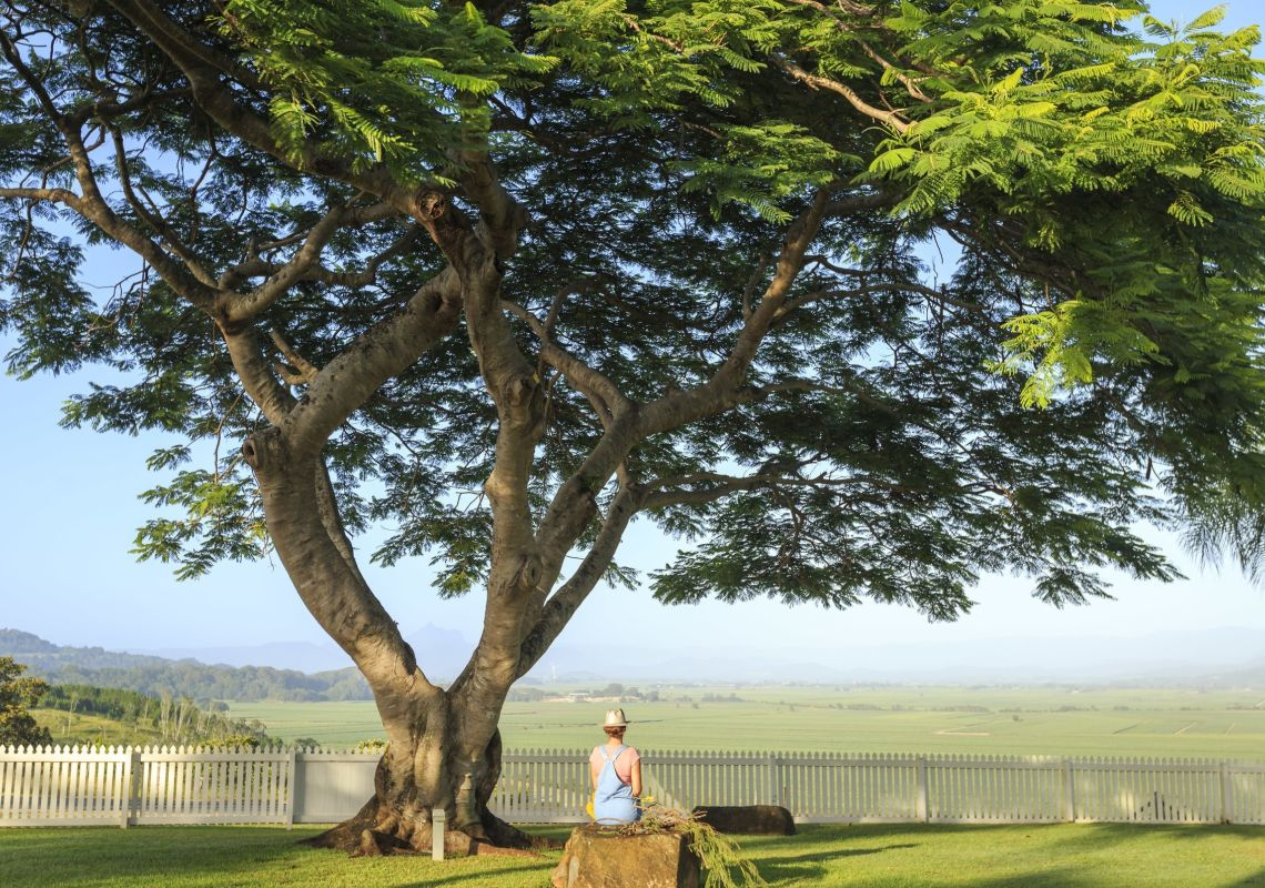 Woman enjoying scenic views across the Northern Rivers region at the Plantation House in Duranbah