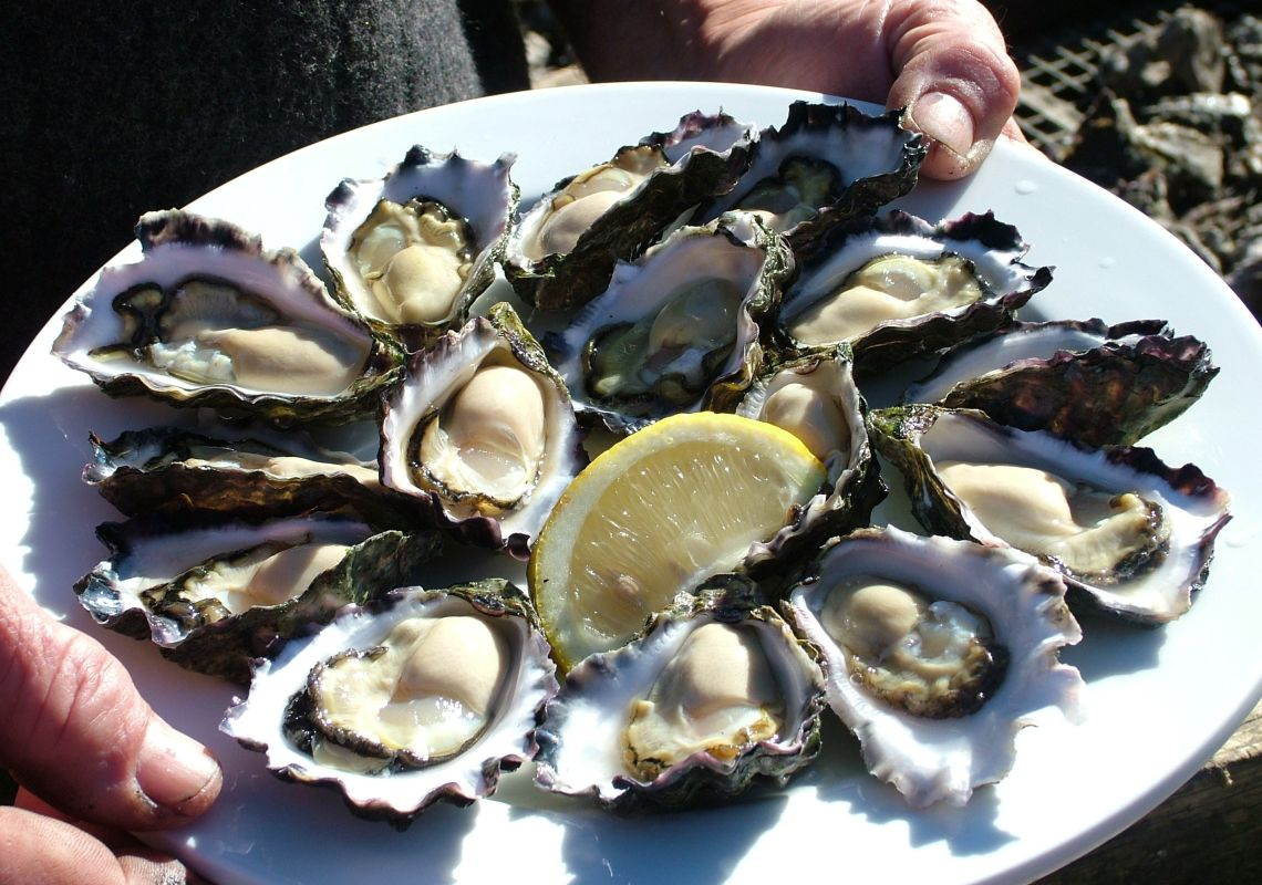 Succulent Oysters on the plate at Narooma Oyster Festival Narooma, Batemans Bay & Eurobodalla