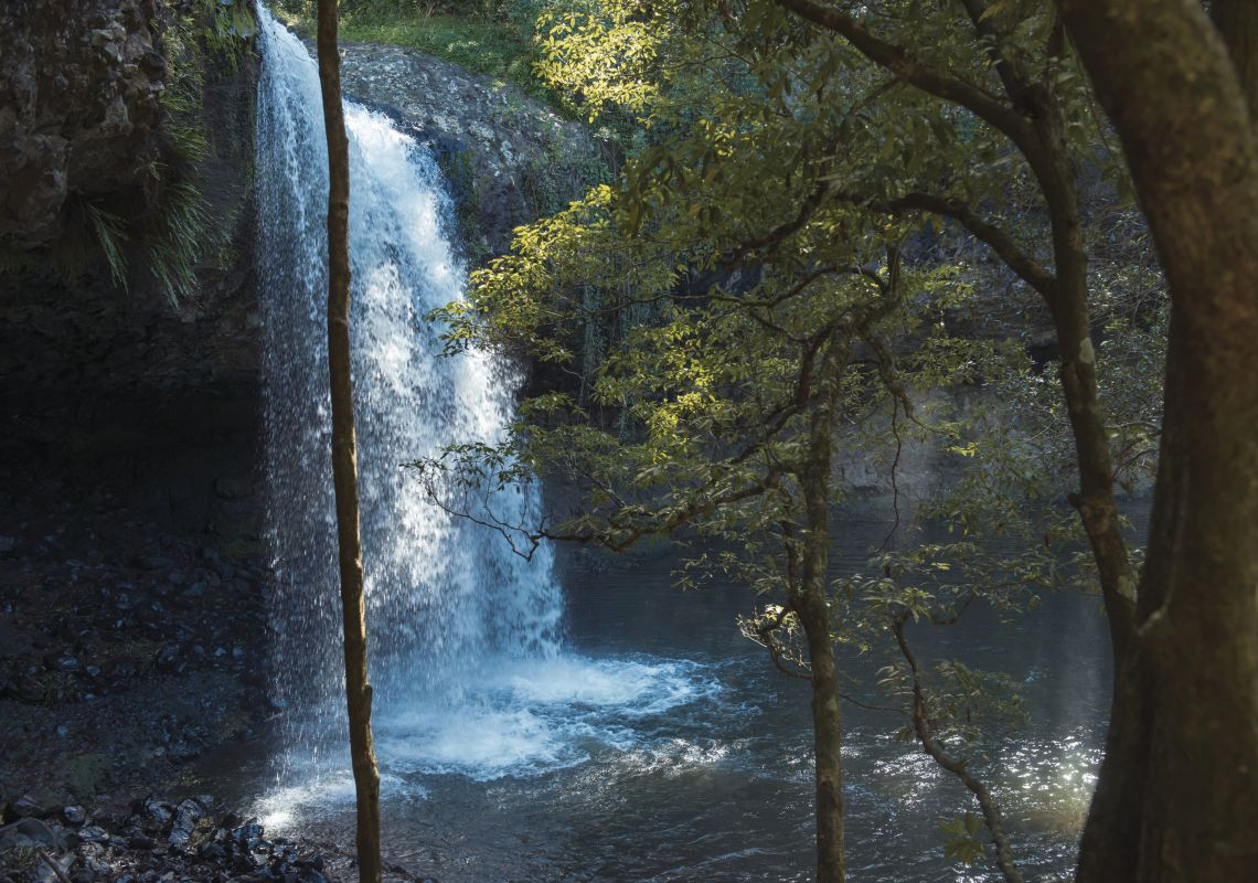 The scenic Killen Falls, Tintenbar surrounded by a big scrub rainforest in Killen Falls Nature Reserve, Byron Bay