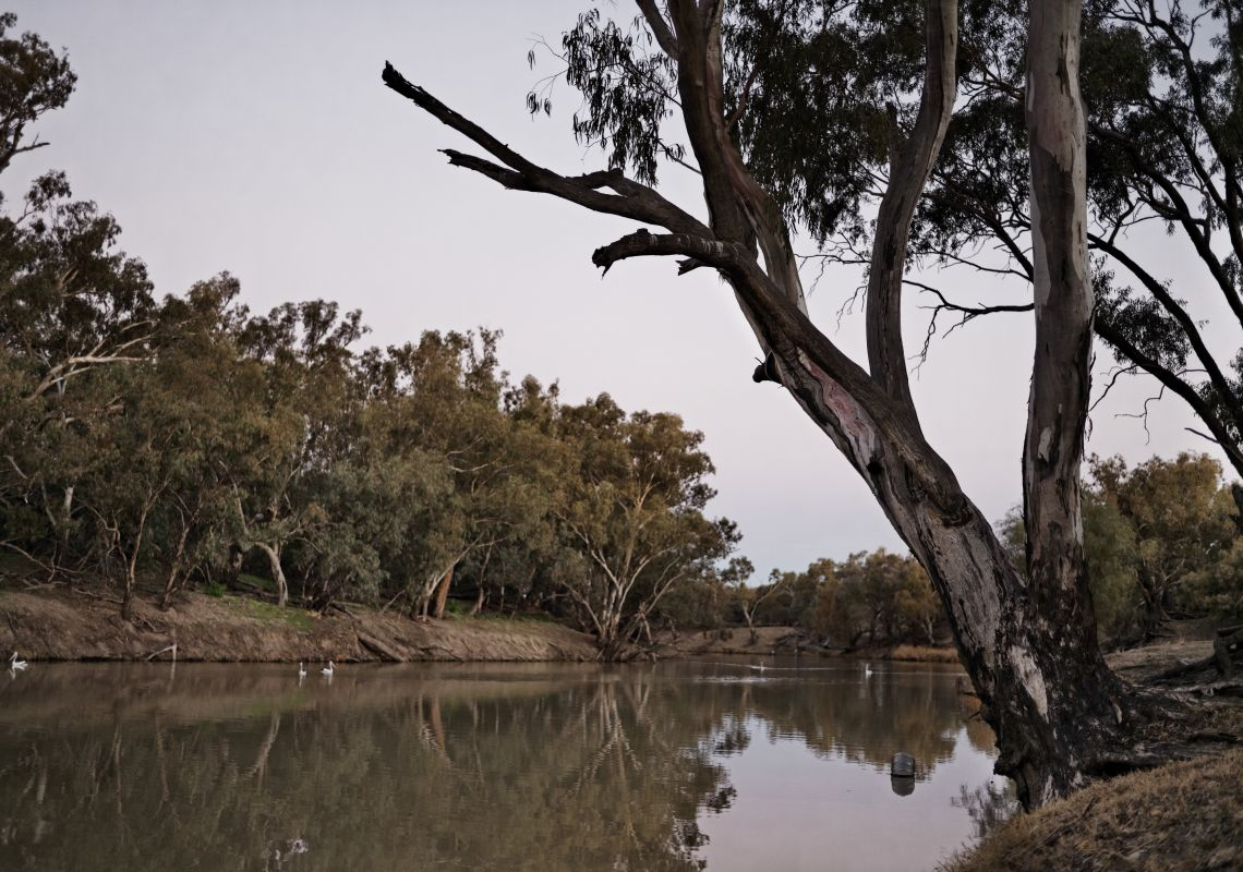 The Barwon River, home to the traditional Aboriginal fish traps in Brewarrina (Ngemba Country), also known as Baiame's Ngunnhu, Outback NSW