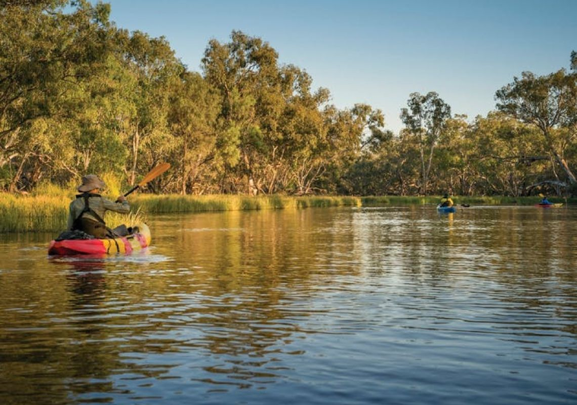 Macquarie Marshes Nature Reserve in Warrumbungle, Country NSW