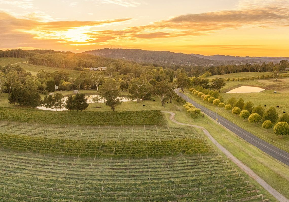 Scenic country views surrounding Centennial Vineyards in Bowral, Southern Highlands