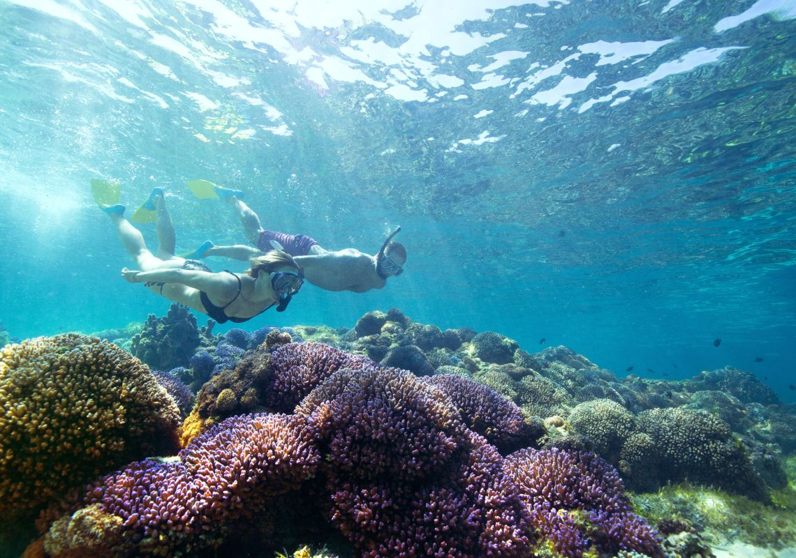 Woman snorkelling off Lord Howe Island