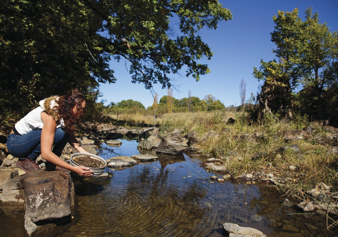 Woman fossicks for gemstones in Reddestone Creek, Glen Innes