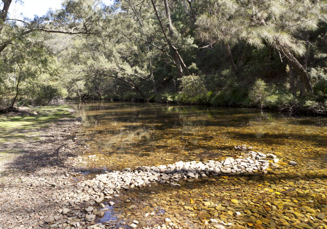 Riverbank, Deua River, Bendethera Valley campground, Deua National Park