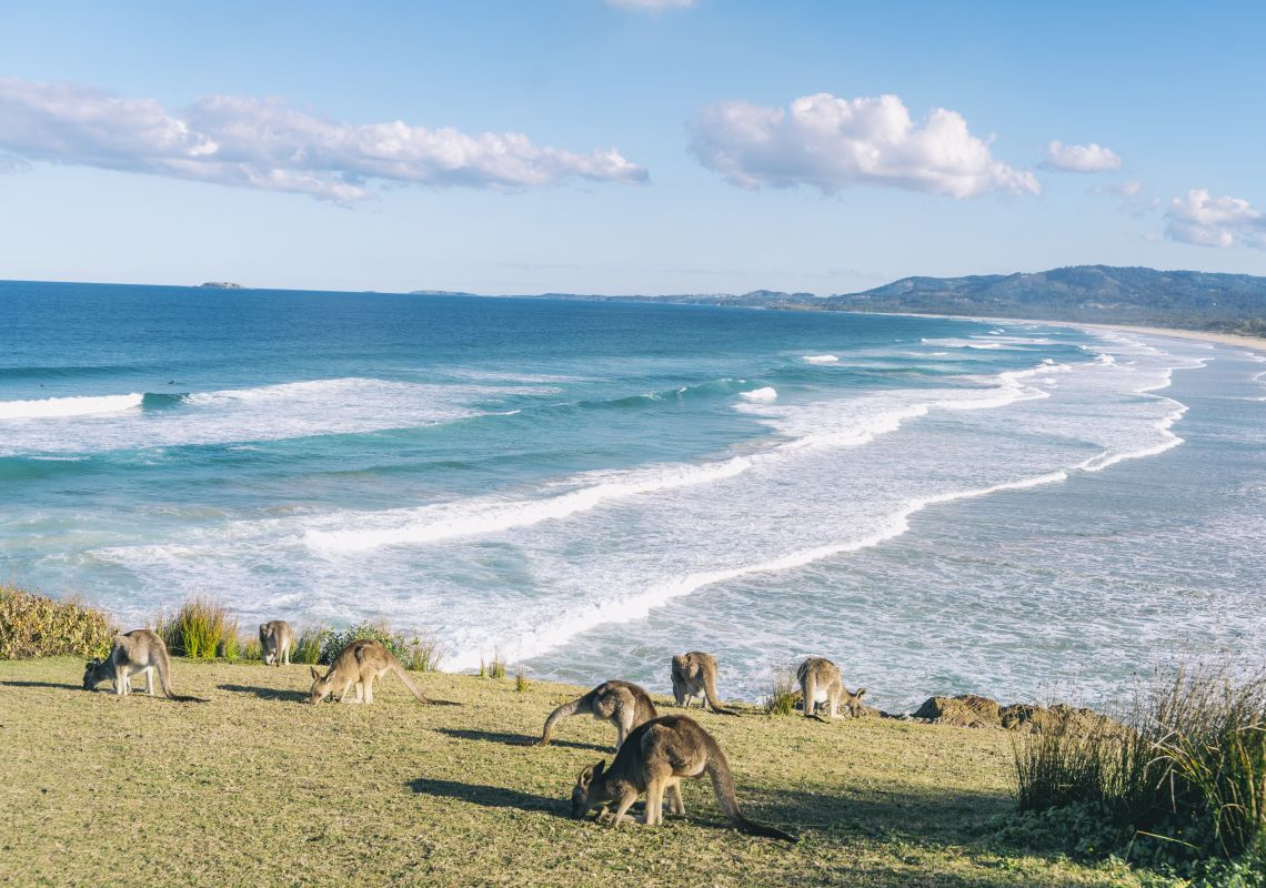 Scenic coastline along Emerald Beach on the Coffs Coast, North Coast
