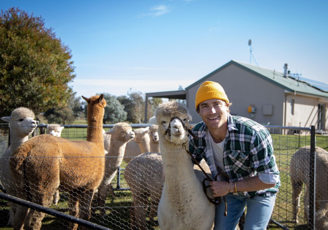 Blackwattle Alpaca Farm